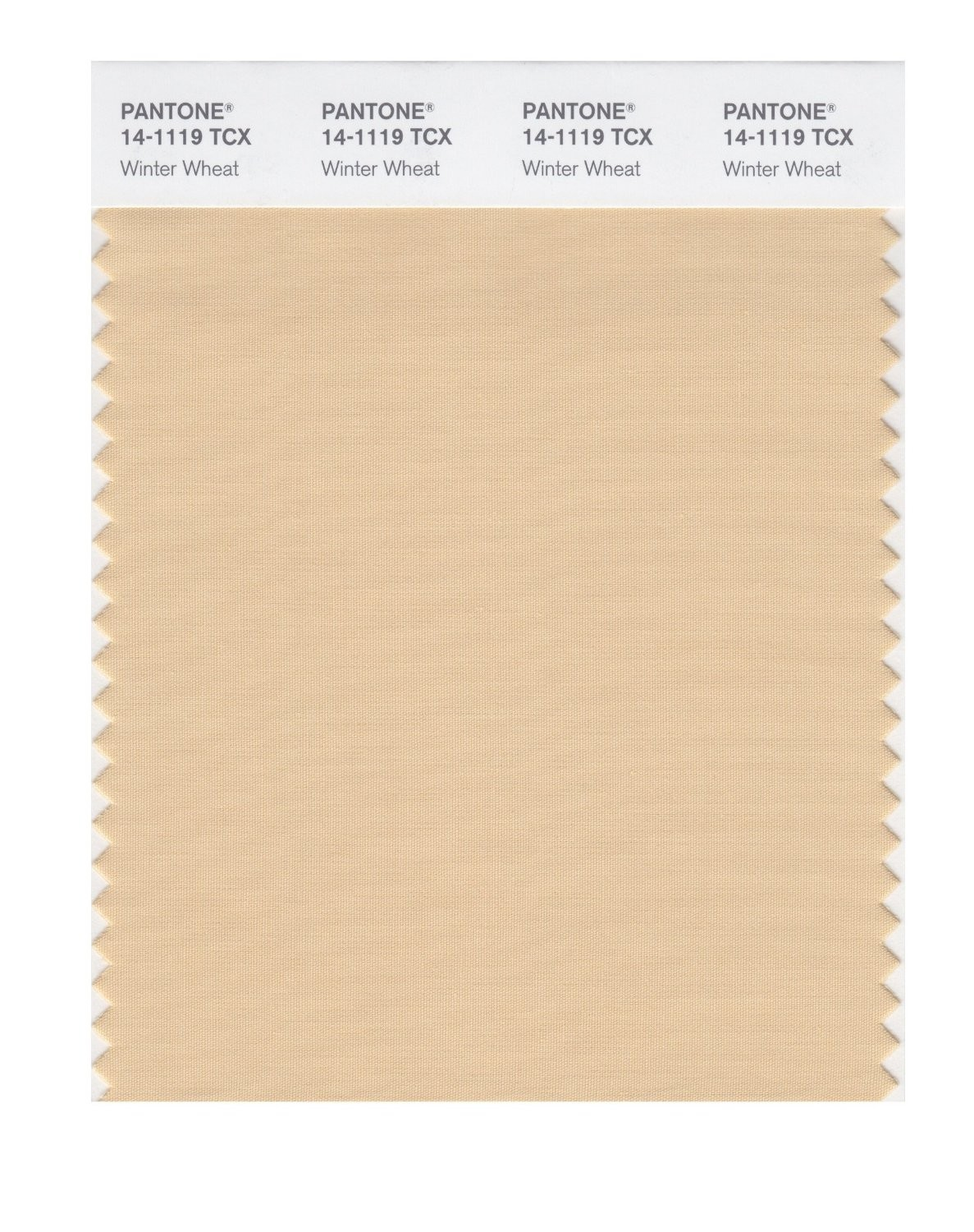 Pantone 14-1119 TCX Swatch Card Winter Wheat
