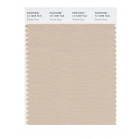 Pantone 14-1209 TCX Swatch Card Smoke Gray