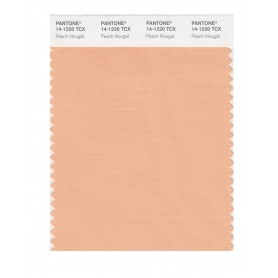 Pantone 14-1220 TCX Swatch Card Peach Nougat