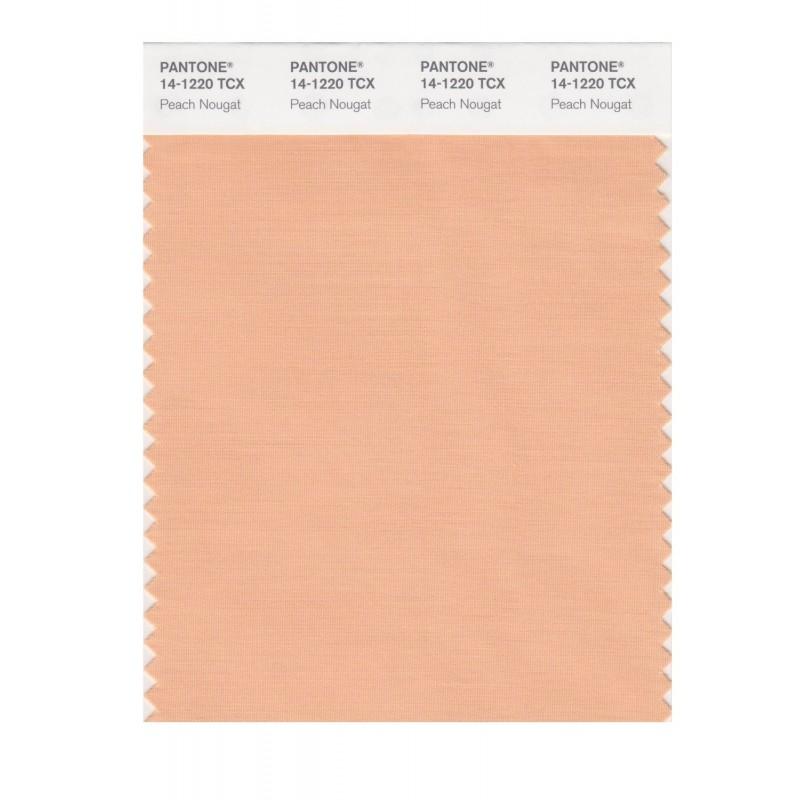 Pantone 14-1213 TCX Swatch Card Toasted Almond