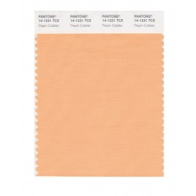 Pantone 14-1231 TCX Swatch Card Peach Cobbler