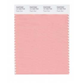 Pantone 14-1324 TCX Swatch Card Peach Bud