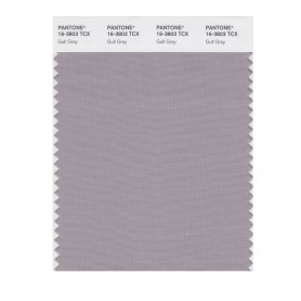Pantone 16-3803 TCX Swatch Card Gull Gray