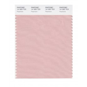 Pantone 14-1907 TCX Swatch Card Peach Skin
