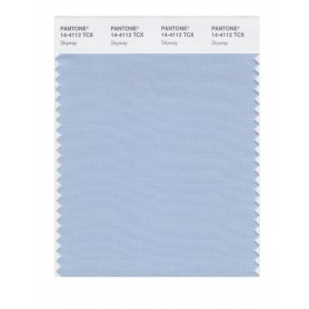 Pantone 14-4112 TCX Swatch Card Skyway