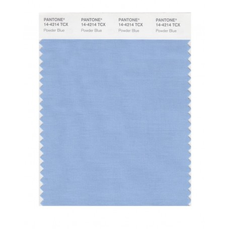 Pantone 14-4202 TCX Swatch Card Harbor Mist