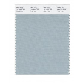 Pantone 14-4306 TCX Swatch Card Cloud Blue