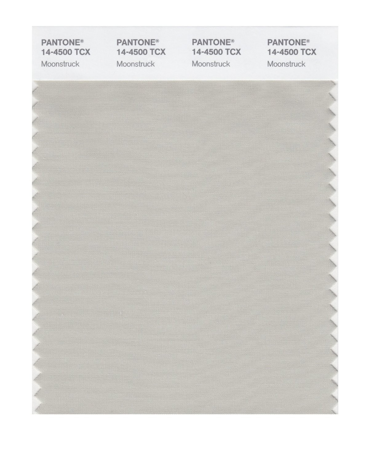 Pantone 14-4500 TCX Swatch Card Moonstruck