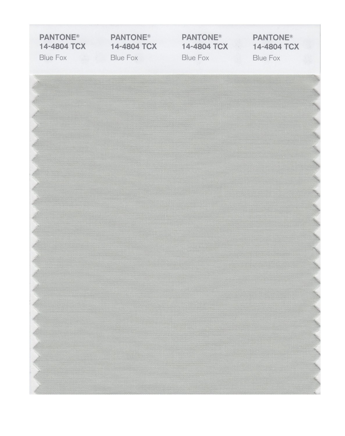 Pantone 14-4804 TCX Swatch Card Blue Fox