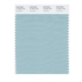 Pantone 14-4810 TCX Swatch Card Canal Blue