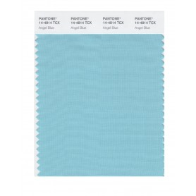 Pantone 14-4814 TCX Swatch Card Angel Blue