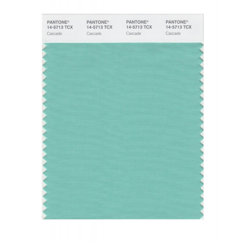 Pantone 14-5420 TCX Swatch Card Cockatoo