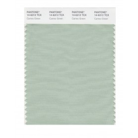 Pantone 14-6312 TCX Swatch Card Cameo Green