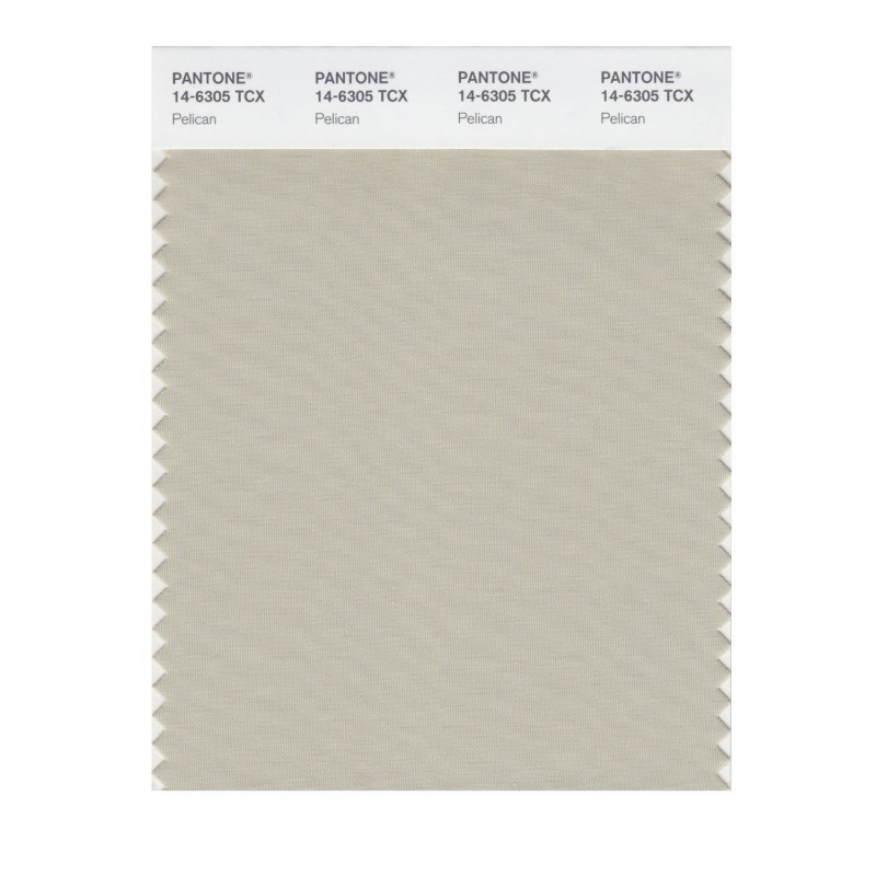 Pantone 14-6008 TCX Swatch Card Subtle Green