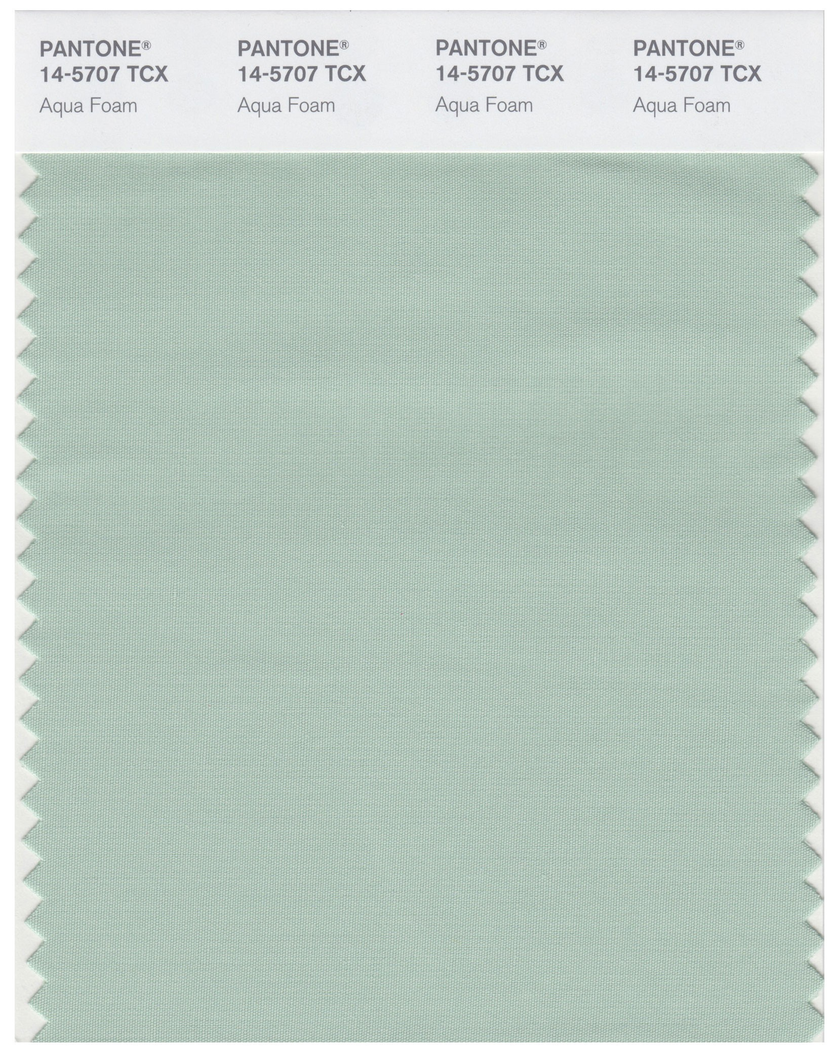 Pantone 14-5707 TCX Swatch Card Aqua Foam