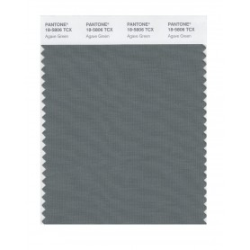 Pantone 18-5806 TCX Swatch Card Agave Green
