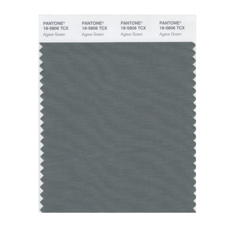Pantone 18-5806 TCX Swatch Card Agave Green Buy in india