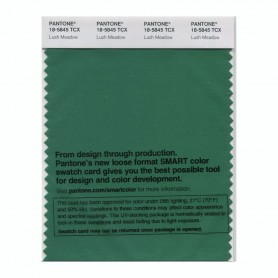 Pantone 18-5845 TCX Swatch Card Lush Meadow