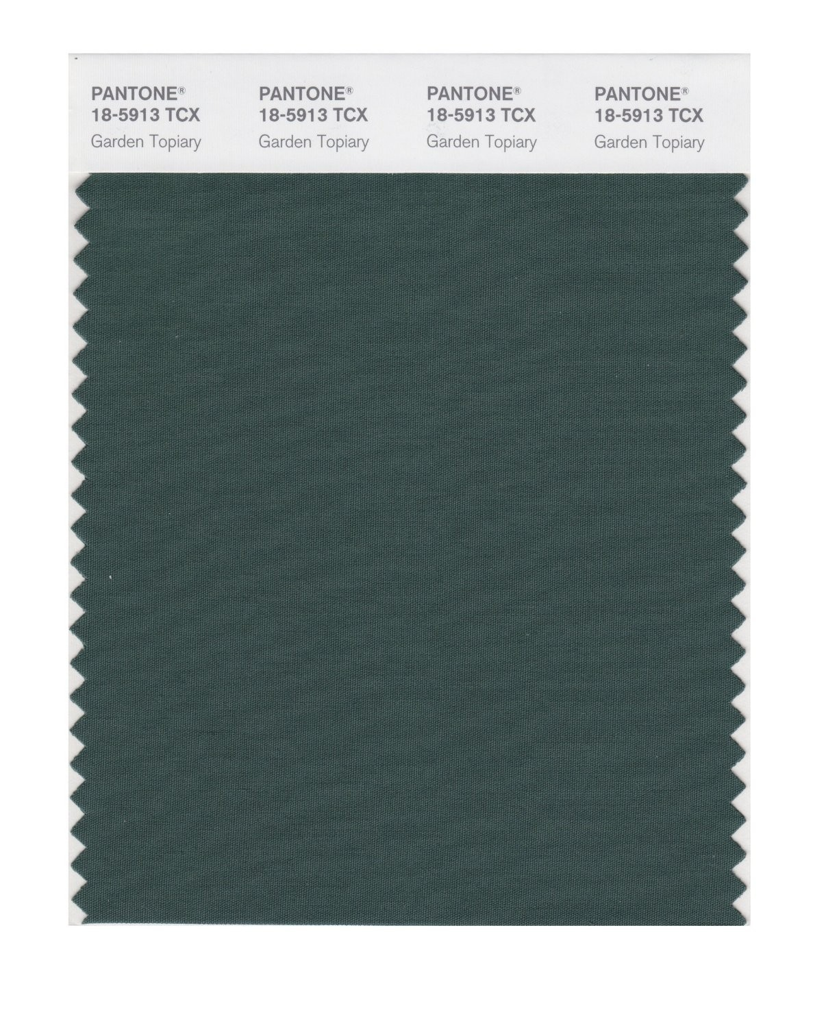 Pantone 18-5913 TCX Swatch Card Garden Topiary