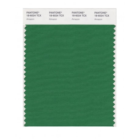 Pantone 18-6024 TCX Swatch Card Amazon