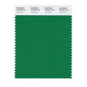Pantone 18-6030 TCX Swatch Card Jolly Green