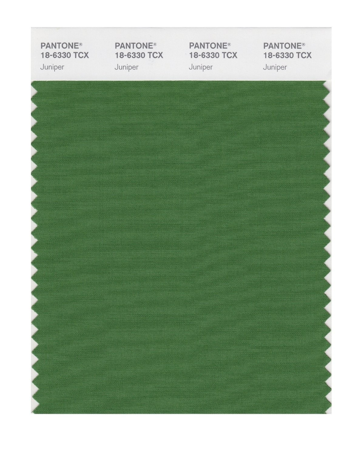 Pantone 18-6330 TCX Swatch Card Juniper