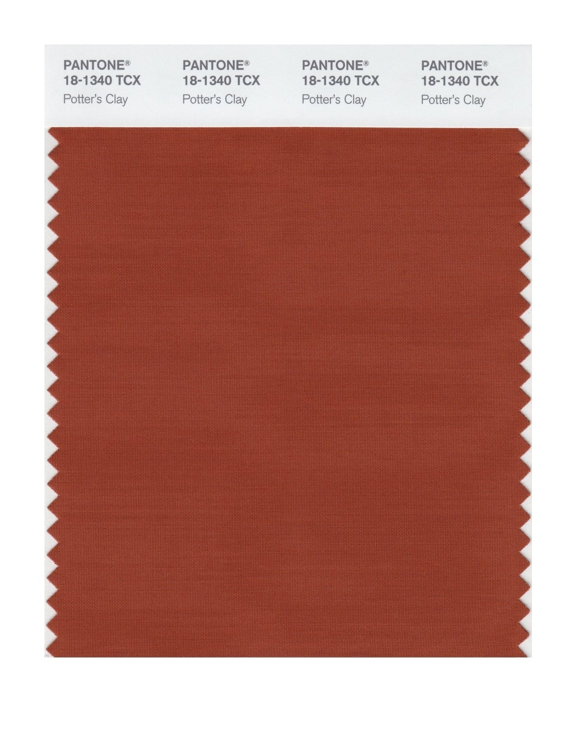 Pantone 18-1340 TCX Swatch Card Potter's Clay