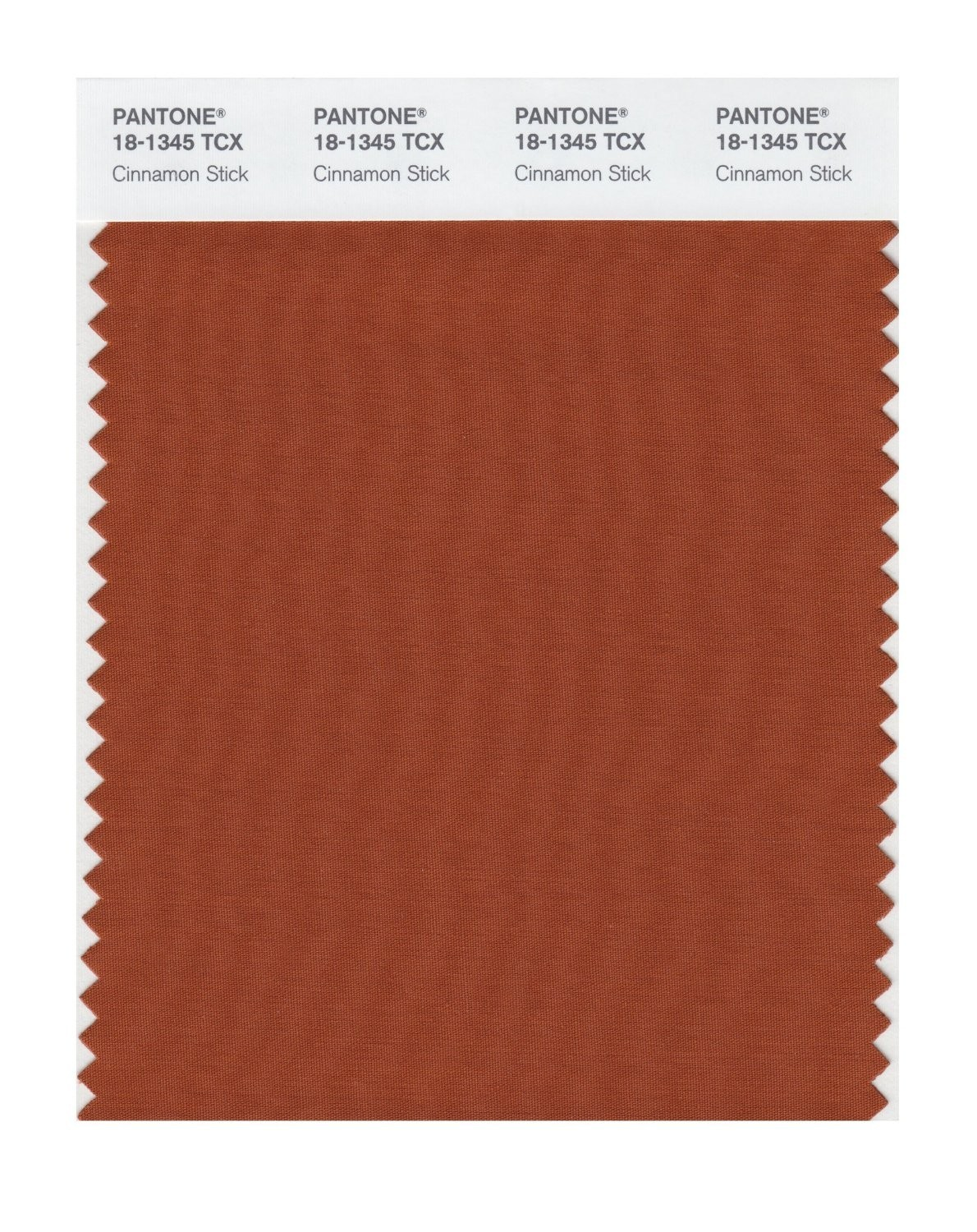 Pantone 18-1345 TCX Swatch Card Cinnamon Stick