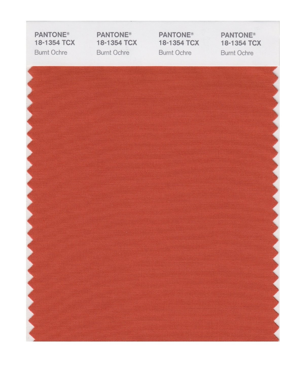 Pantone 18-1354 TCX Swatch Card Burnt Ochre