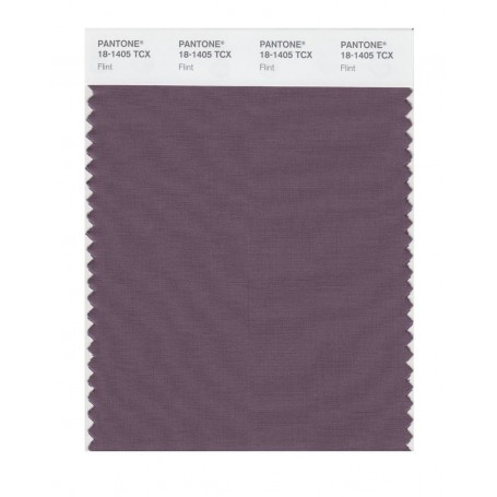 Pantone 18-1405 TCX Swatch Card Flint