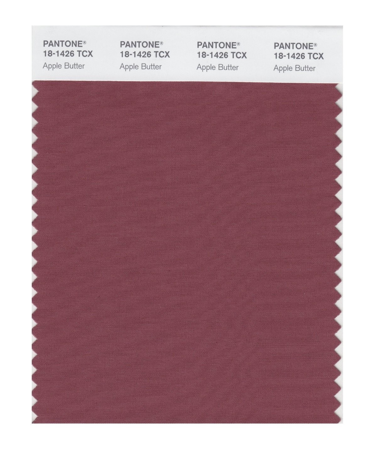 Pantone 18-1426 TCX Swatch Card Apple Butter