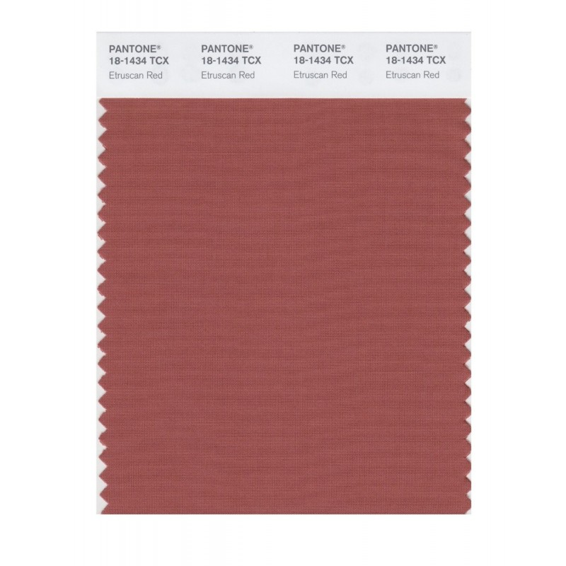 Pantone 18-1304 TCX Swatch Card Falcon