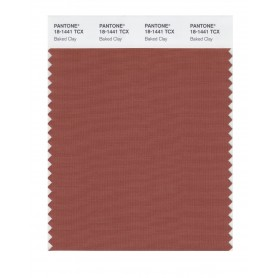 Pantone 18-1441 TCX Swatch Card Baked Clay
