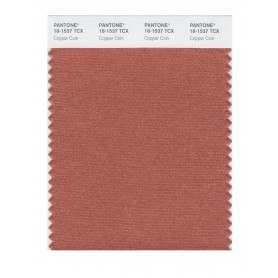 Pantone 18-1537 TCX Swatch Card Copper Coin