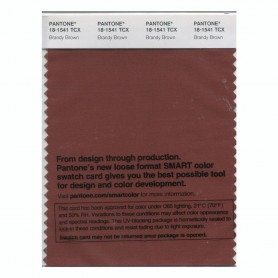 Pantone 18-1541 TCX Swatch Card Brandy Brown