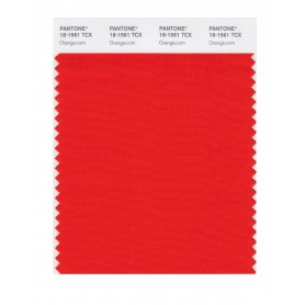 Pantone 18-1561 TCX Swatch Card Orange.com