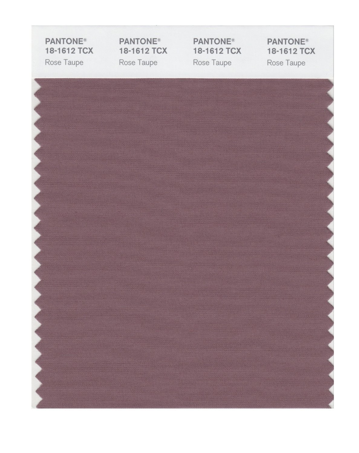 Pantone 18-1612 TCX Swatch Card Rose Taupe