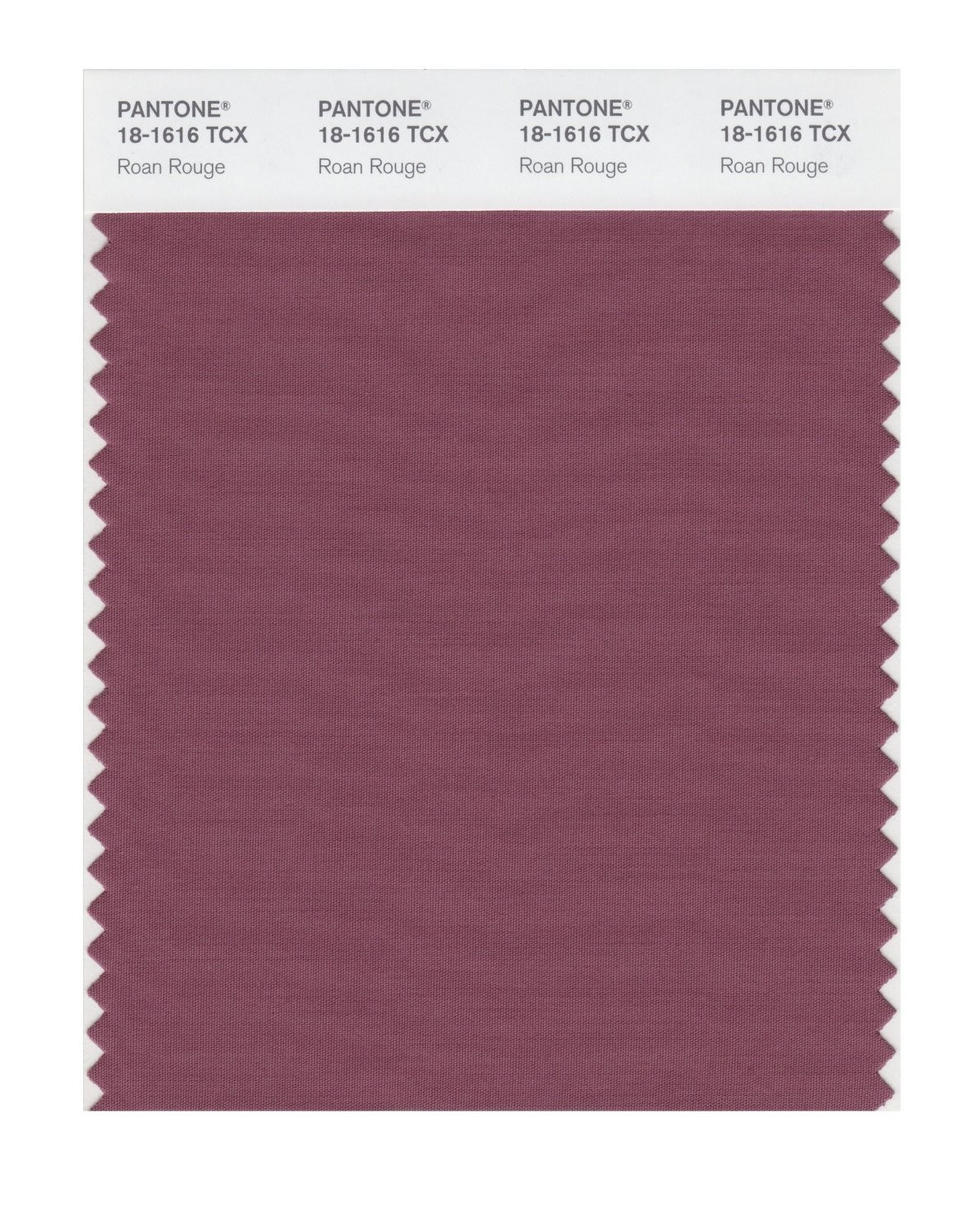 Pantone 18-1616 TCX Swatch Card Roan Rouge