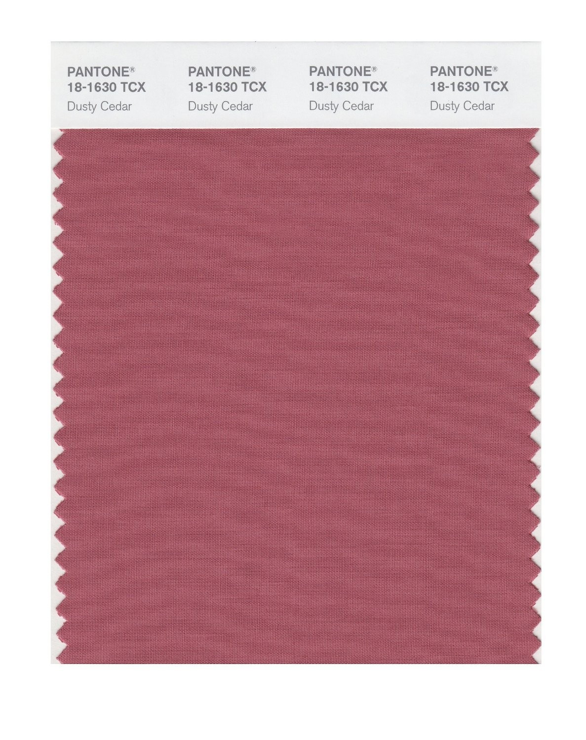Pantone 18-1630 TCX Swatch Card Dusty Cedar
