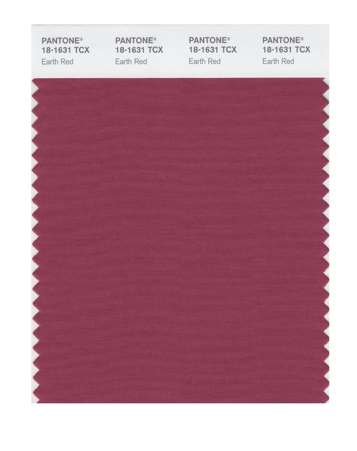 Pantone 18-1631 TCX Swatch Card Earth Red