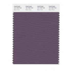Pantone 18-1706 TCX Swatch Card Black Plum