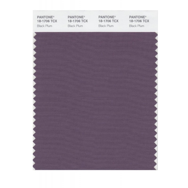 Pantone 18-1706 TCX Swatch Card Black Plum Buy in india
