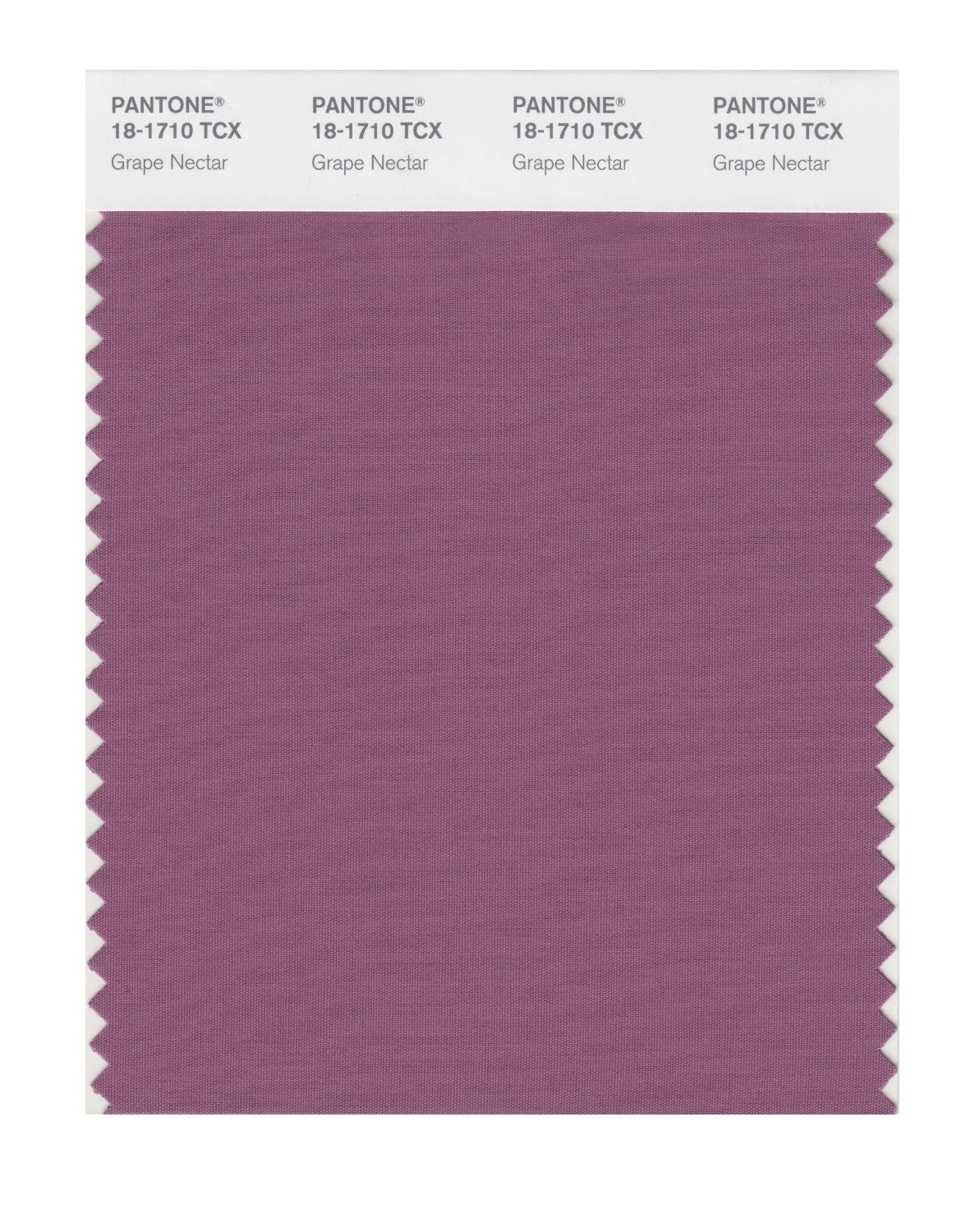 Pantone 18-1710 TCX Swatch Card Grape Nectar