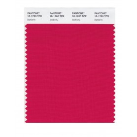 Pantone 18-1760 TCX Swatch Card Barberry