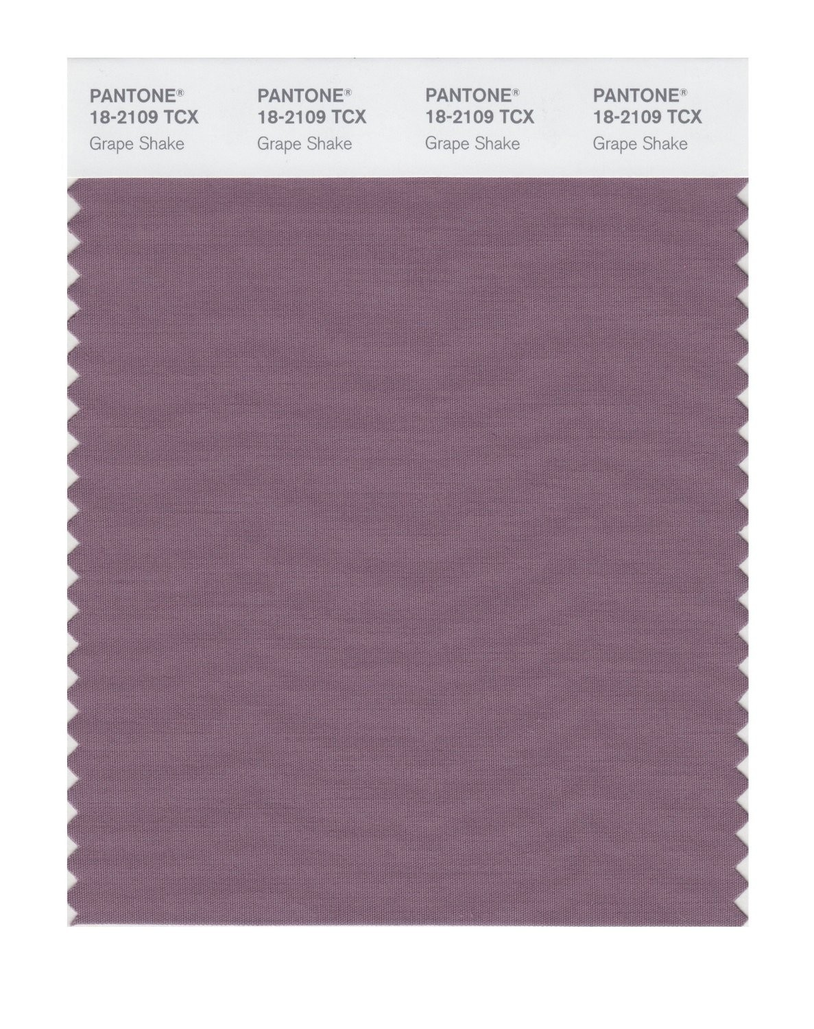 Pantone 18-2109 TCX Swatch Card Grape Shake