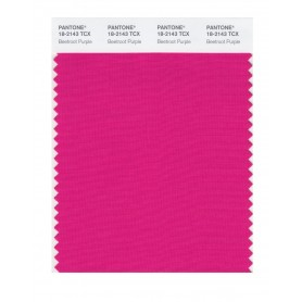 Pantone 18-2143 TCX Swatch Card Beetroot Purple