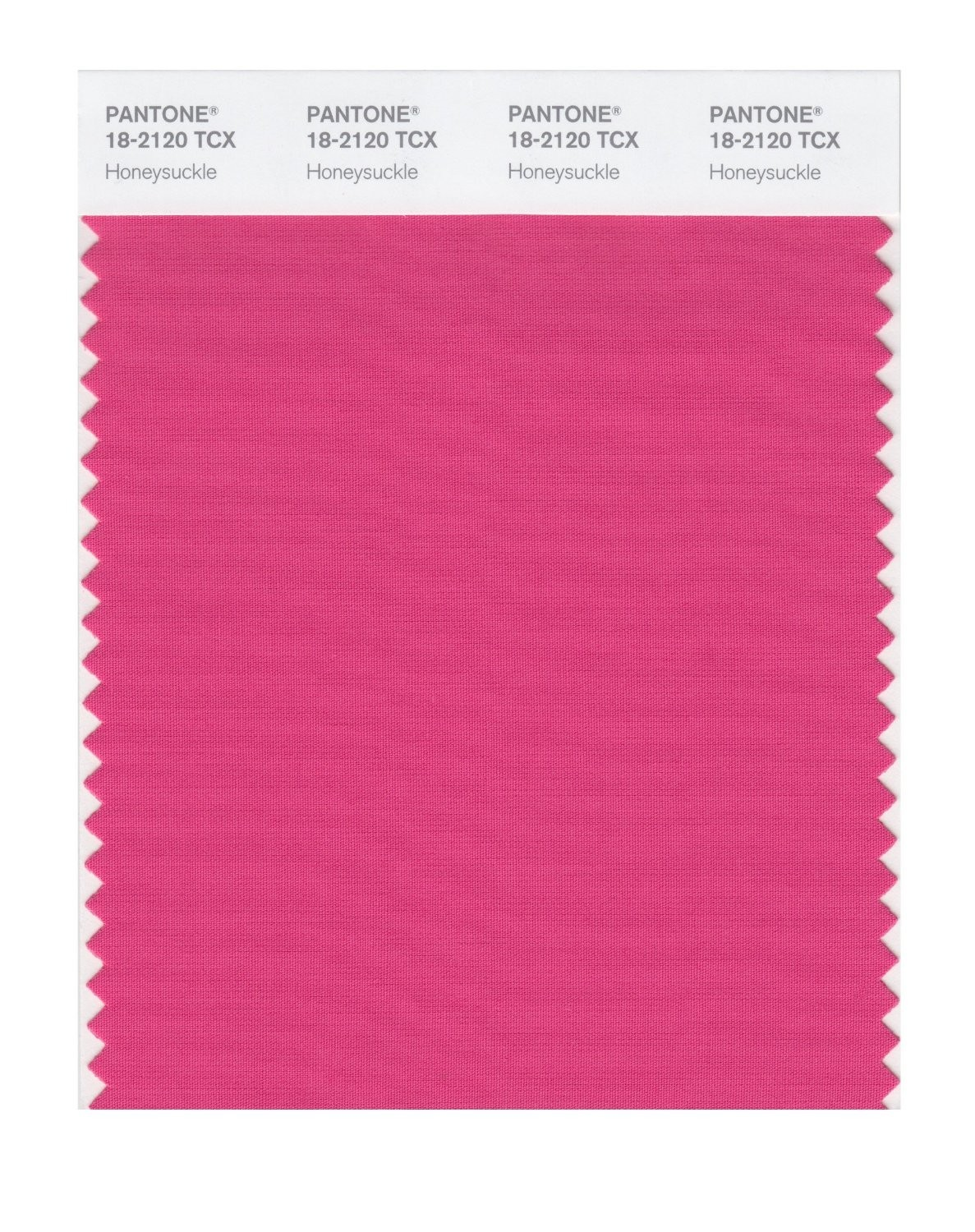Pantone 18-2120 TCX Swatch Card Honeysuckle