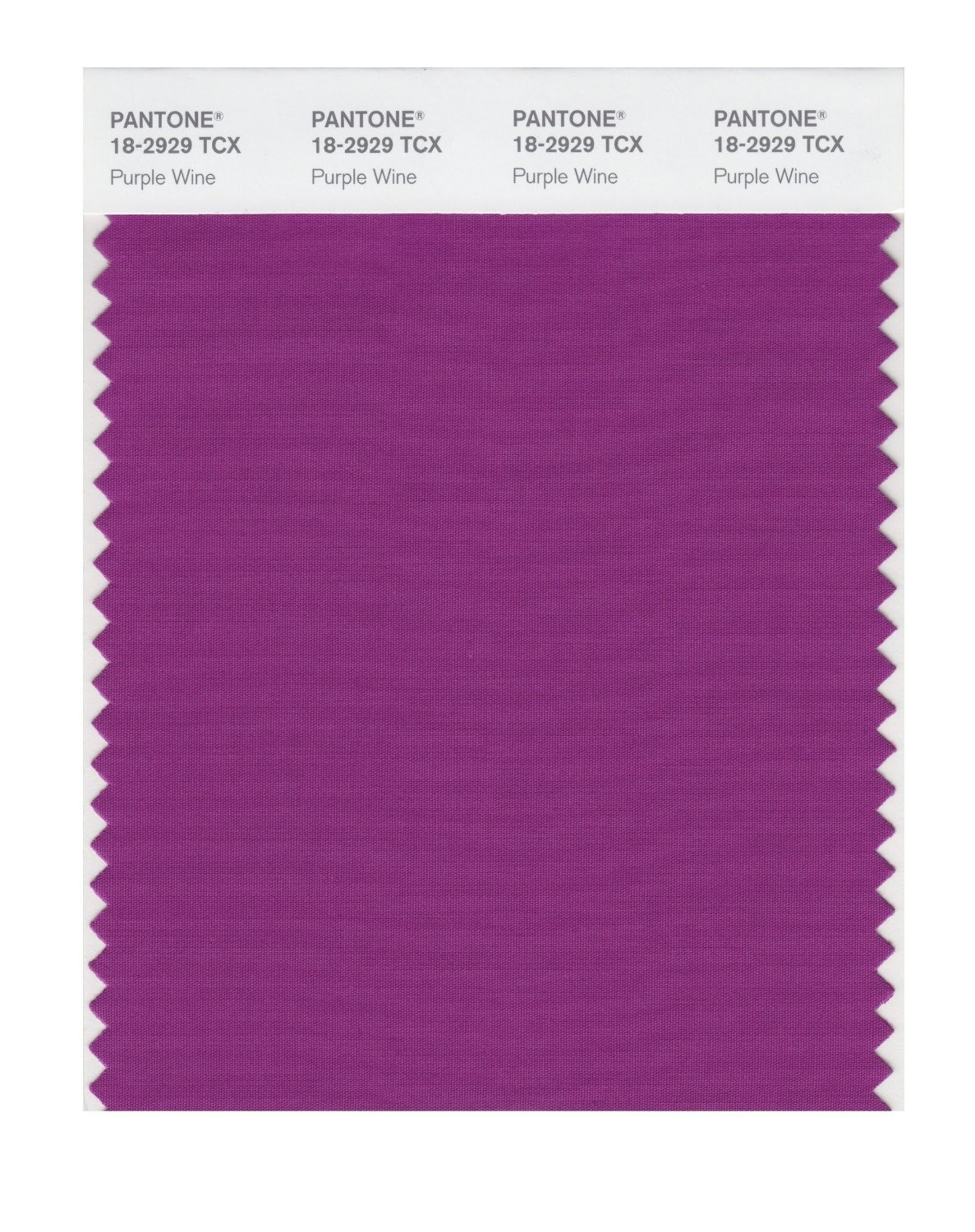 Pantone 18-2929 TCX Swatch Card Purple Wine
