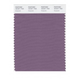 Pantone 18-3211 TCX Swatch Card Grapeade
