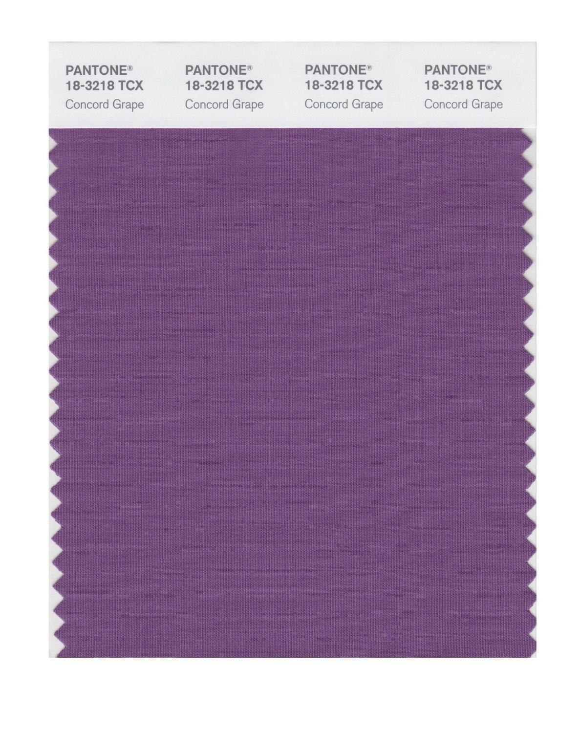 Pantone 18-3218 TCX Swatch Card Concord Grape